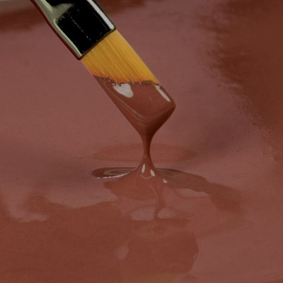PAINT IT! - Peinture comestible Marron de Rainbow dust